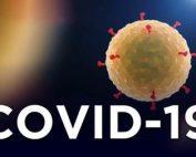 Covid-19 pozadina